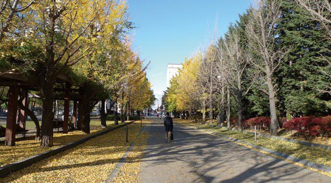 2019_1109日記 秋の中島公園とワイン